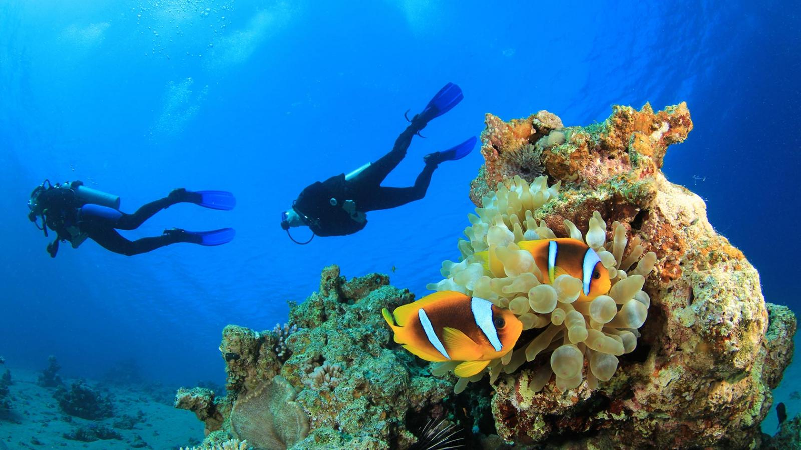Kas Turkey: Scuba Diving in the crystal clear waters of ...