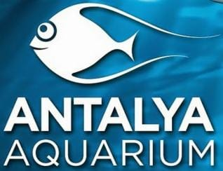 Antalya: Book now for the world's biggest tunnel Aquarium