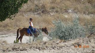 Horseback Riding tours in most beautiful valleys of Cappadocia