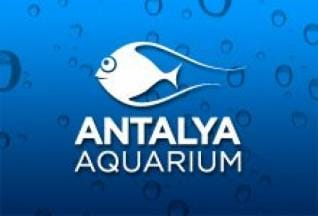 Book now for the World biggest tunnel Aquarium from Alanya
