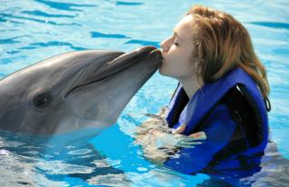 Swimming with Dolphins in Side Antalya