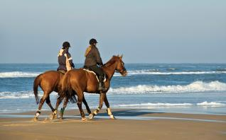 Horseback Riding at the Golden sandy Beaches of Side