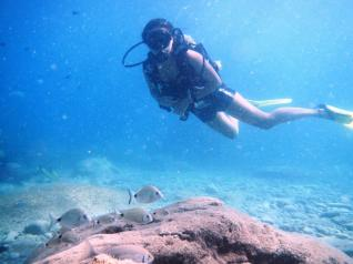 Scuba Diving for Beginners in Side, Kemer and Alanya