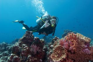 Scuba Diving Alanya: Scuba Diving for Beginners in Turquoise Waters